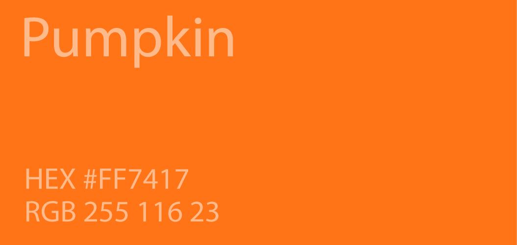 Pumpkin Color Hex Ff7417 Rgb 255 116 23 Burnt Orange