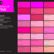 shades of pink color palette chart